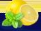Menthe citron icon